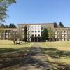 「世界大学ランキング日本版2020」私立で1位を獲得!国際基督教大学(ICU)の帰国生徒にとっての魅力とは?